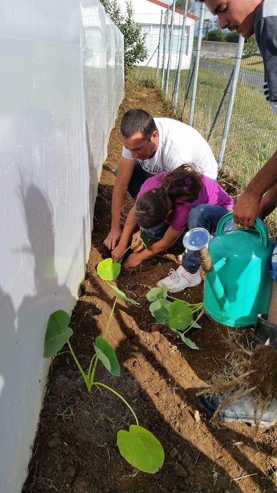 EBI Arrifes School preparing abiological camp