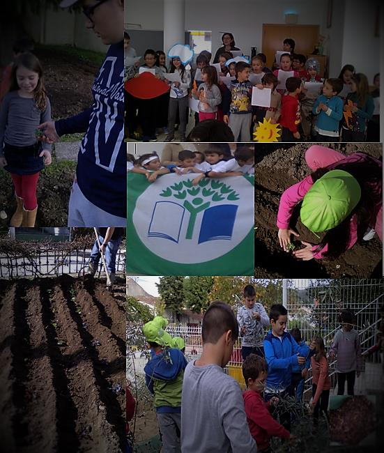 """Global Action Day"" na EB1 de Lamas"