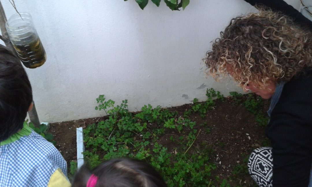 Dia Internacional das Eco-Escolas – Colégio Mãe Galinha