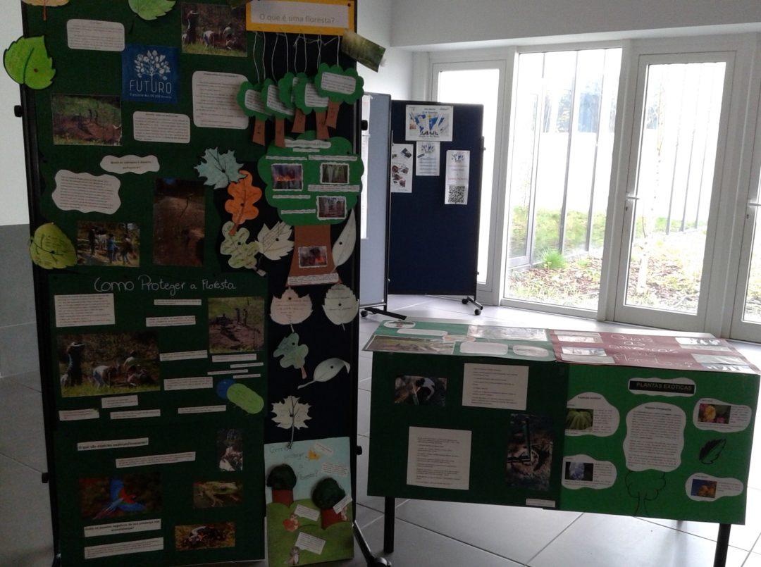 Dia mundial da Terra e Dia internacional das Eco-Escolas