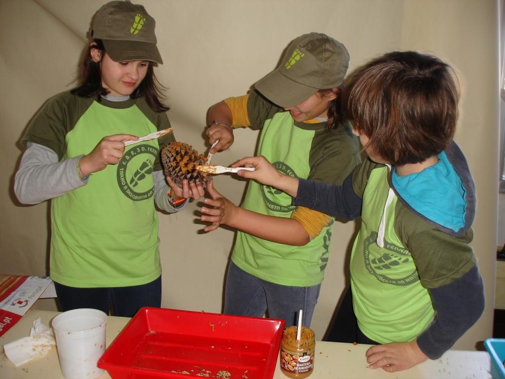 Vigilantes da Natureza Juniores em ação – Escola Básica 2.3 D. Fernando II