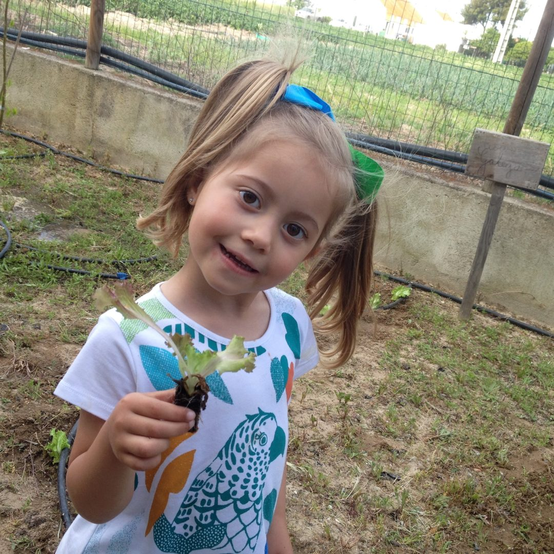 Atividades na horta escolar, pomar e galinheiro