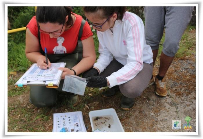 Ação de monotorização e limpeza do Rio Neiva