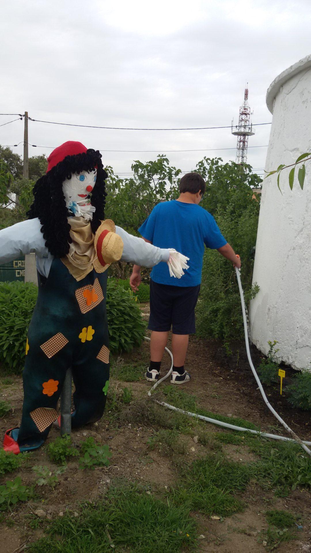 Cuidar dos canteiros de ervas aromáticas do Alto de S. Bento