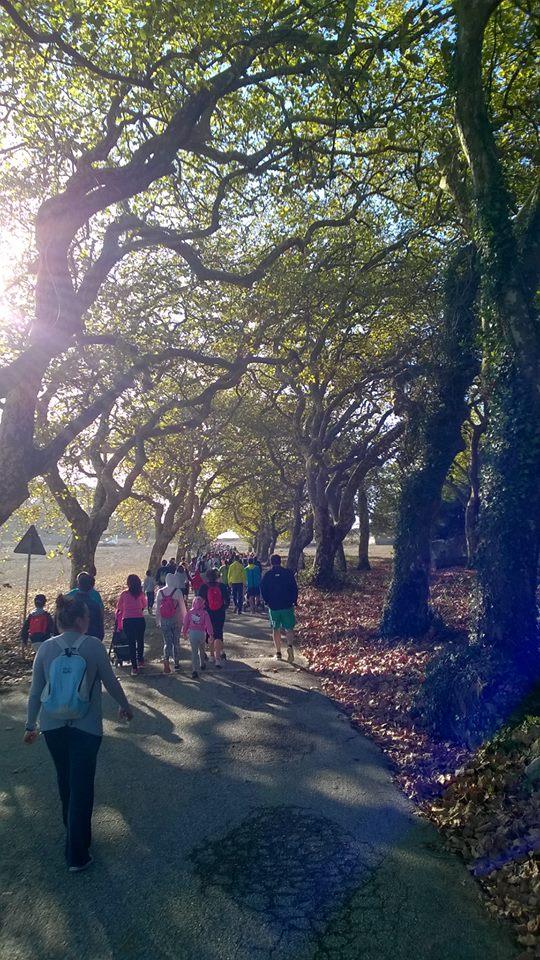 3ª Caminhada pela Floresta