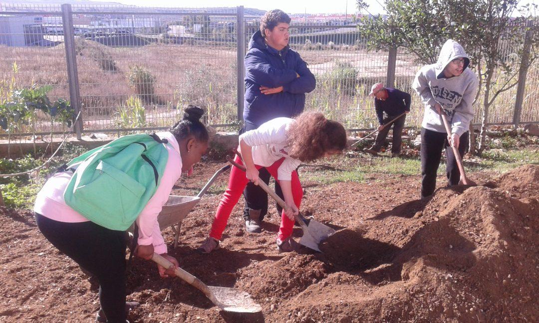 Hortas Biológicas e a integração de alunos com multideficiências
