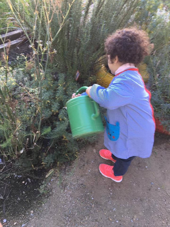 Cuidar da horta e explorar os cheiros das plantas aromáticas