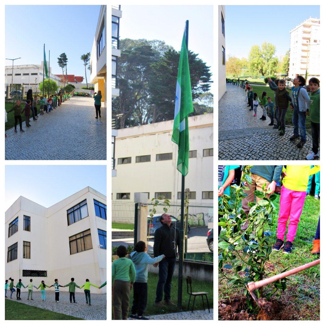 """Dia Internacional Eco-Escolas – """"Todos pela floresta"""""""