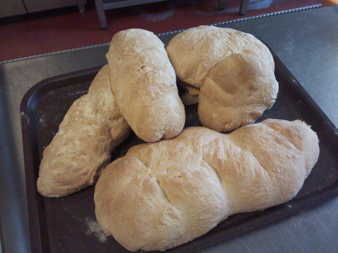 Dia Mundial da Alimentação – O Ciclo do Pão