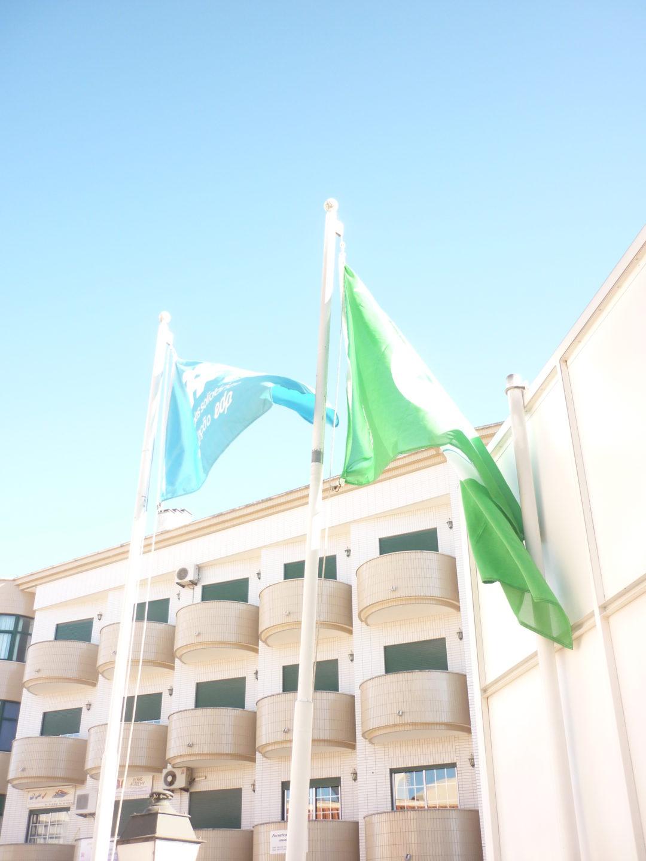 Hastear a Bandeira Eco-Escolas – Externato Cooperativo da Benedita