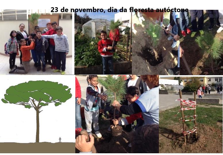 Comemoração do dia da floresta autóctone