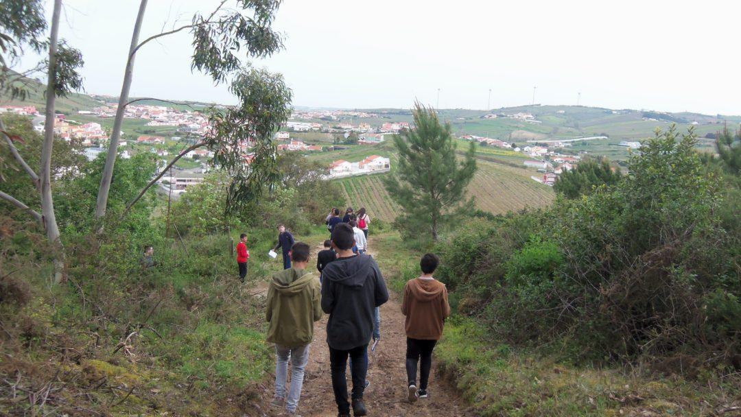Biodiversidade e geodiversidade em redor da Escola Básica de Freiria