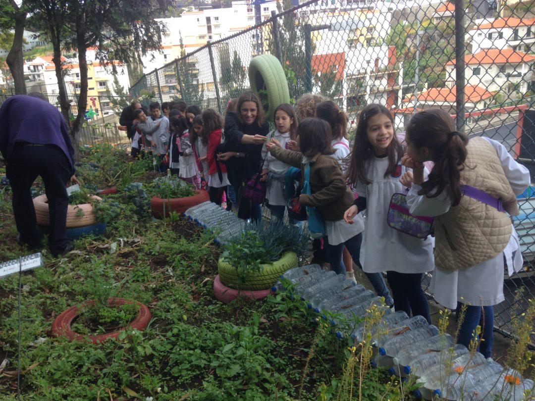 A bio-horta recebeu visitas :)