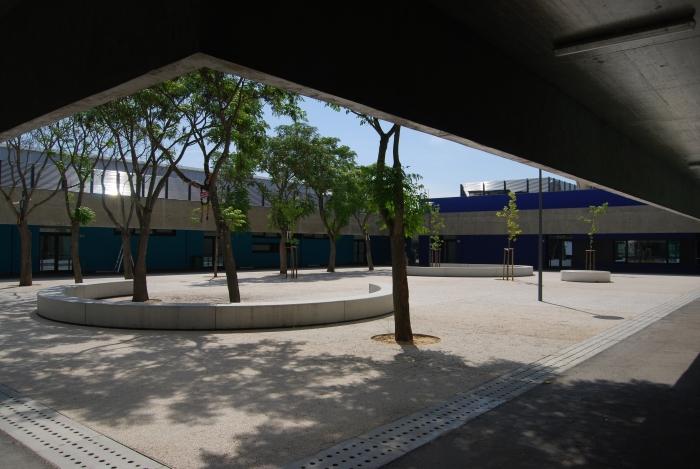 As Árvores da nossa Escola.