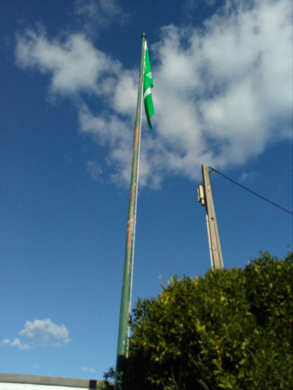 A bandeira verde