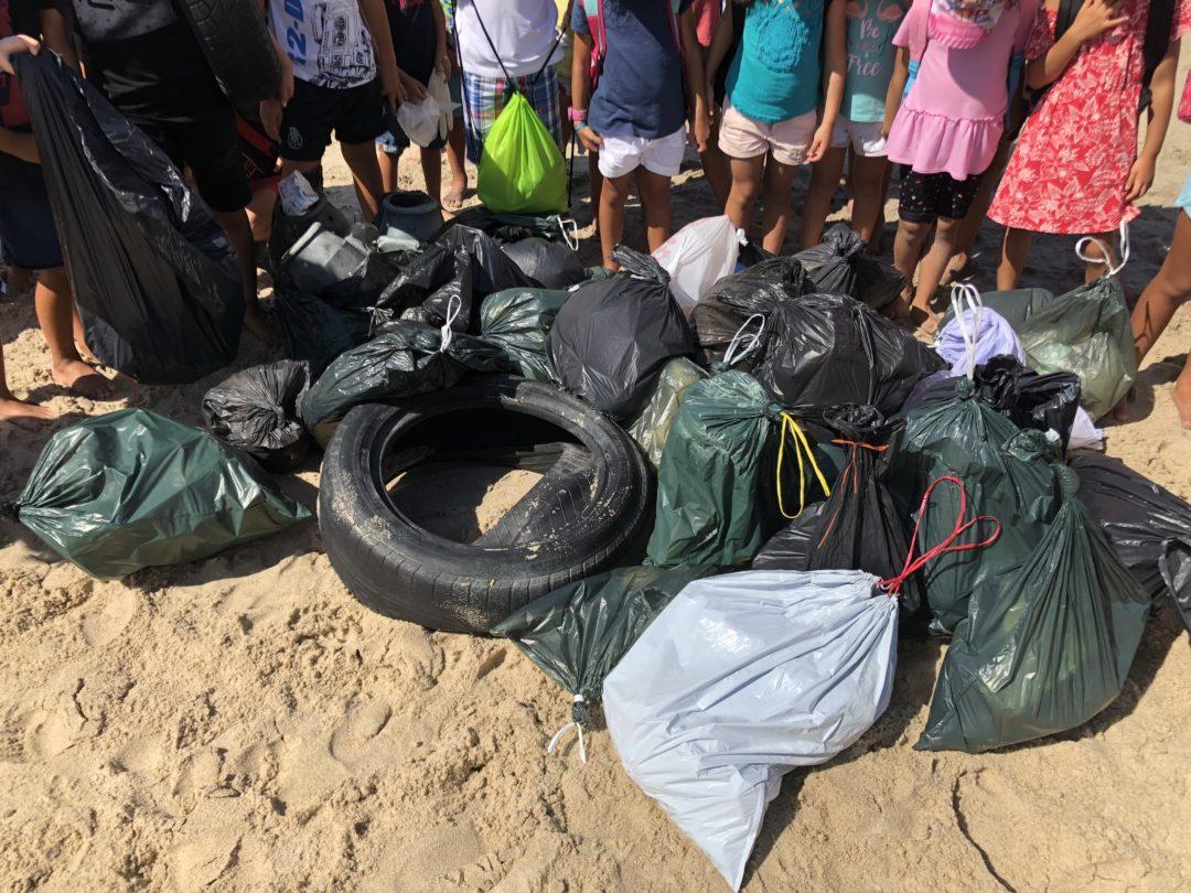 Recolha de lixo na praia