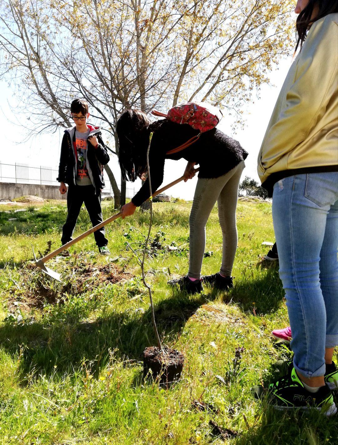 Plantar uma árvore, Proteger o futuro