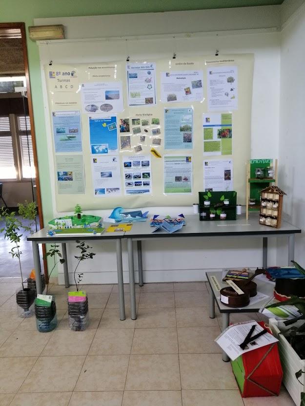 Eco-escolas – Oferta complementar do 8º ano