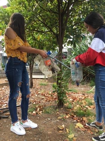 Limpeza do terreno agrícola e manutenção da horta biológica