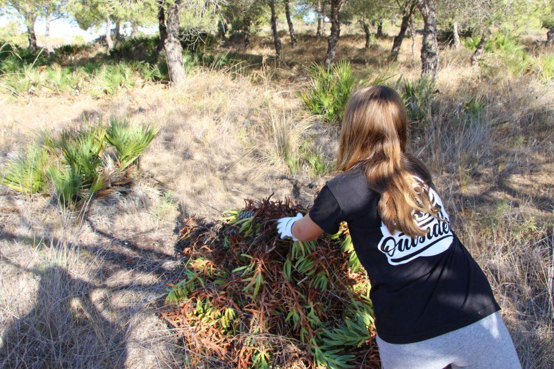 #ecoescolasfazpeloambiente – Remoção de exóticas no Parque Natural da Ria Formosa – Agrupamento de Escolas Dr. Alberto Iria (Olhão)