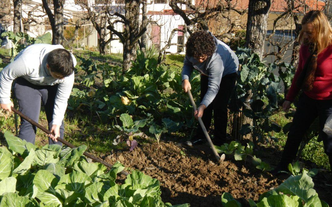 Global Action Days – Da cozinha à terra, da horta à mesa