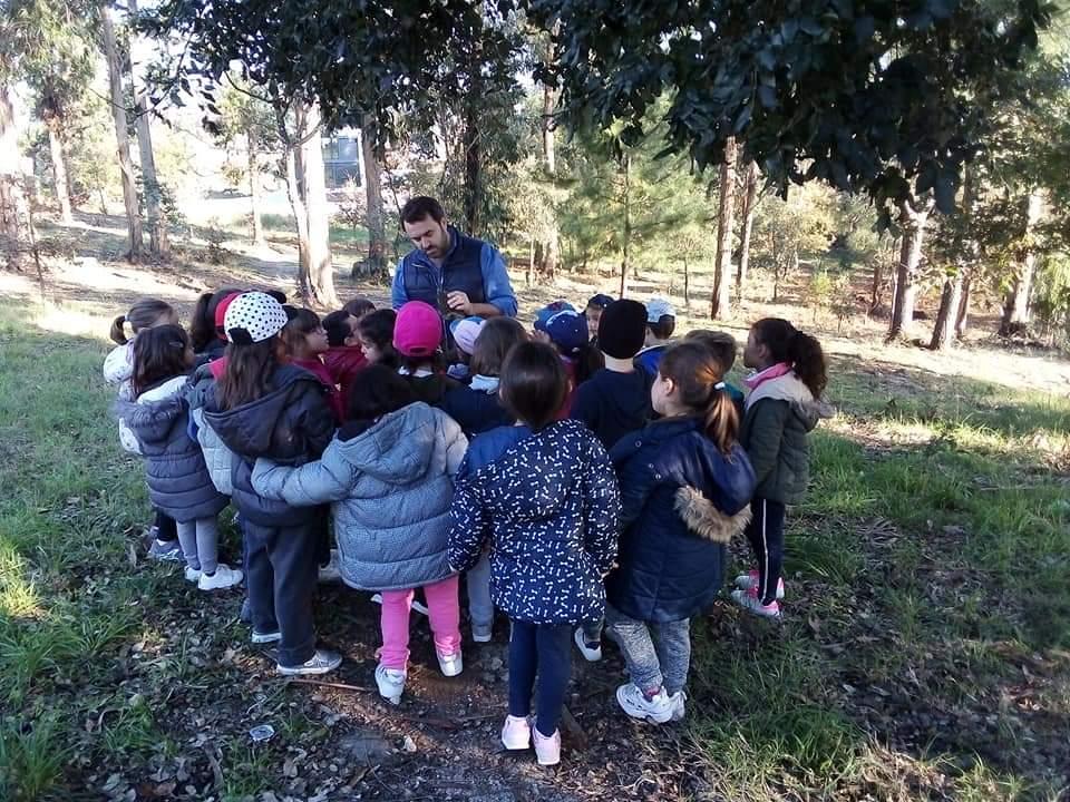 EBS Levante da Maia – Projeto Futuro 100 000 Árvores (hoje foi dia de trabalho árduo!!) 🌲🌳🌴
