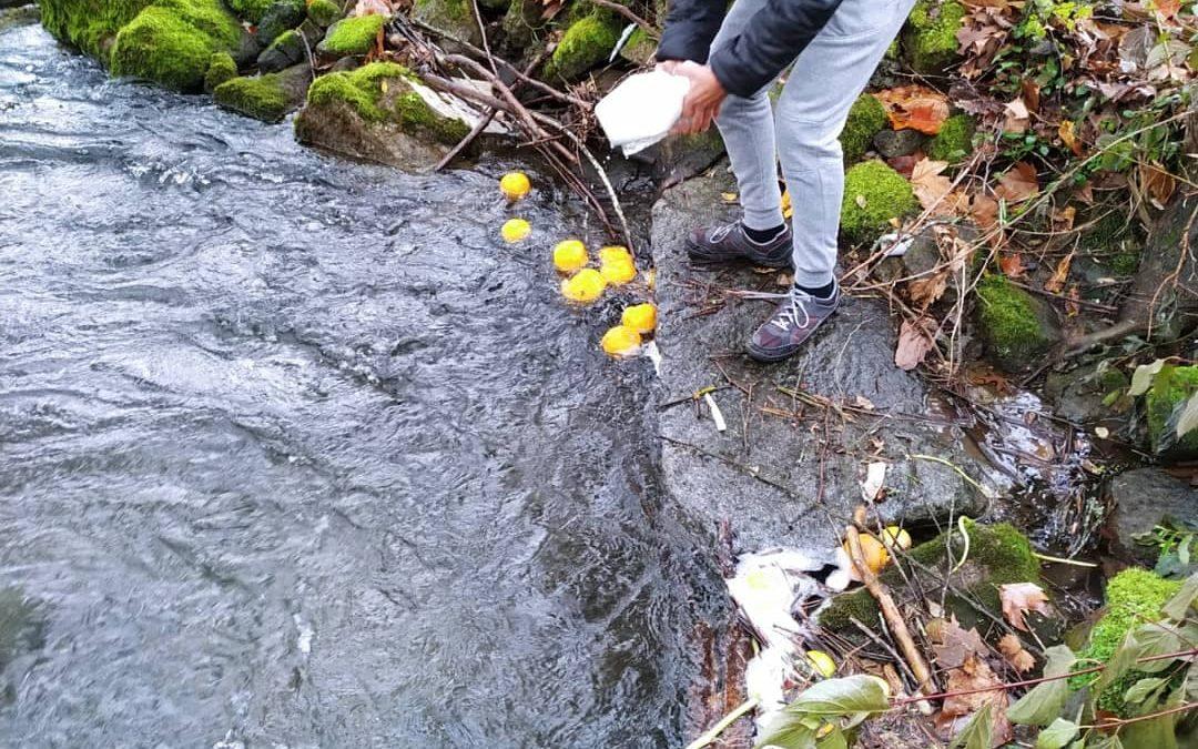 Semana Europeia da prevenção de Resíduos – Juntos pelo que é de todos! Vamos limpar o rio…