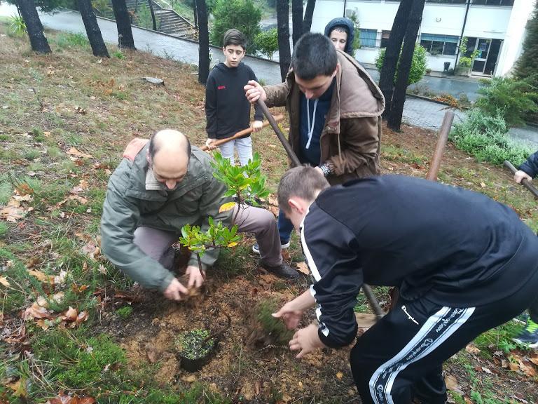 29 de novembro 2019 – Floresta Portuguesa em Dia de Greve Climática Global