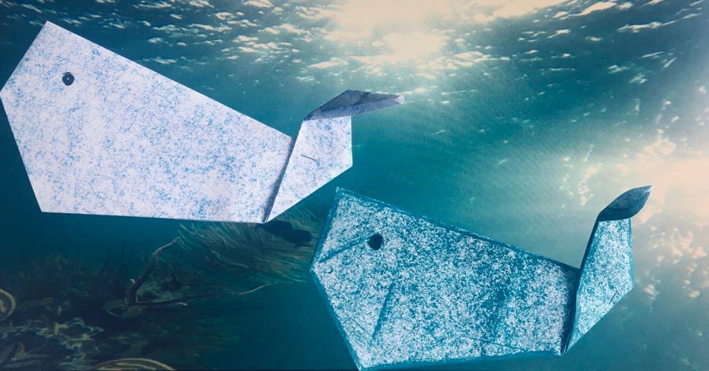 Neste regresso ao mar, lembre-se de preservar!